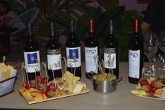 vin-extra-2