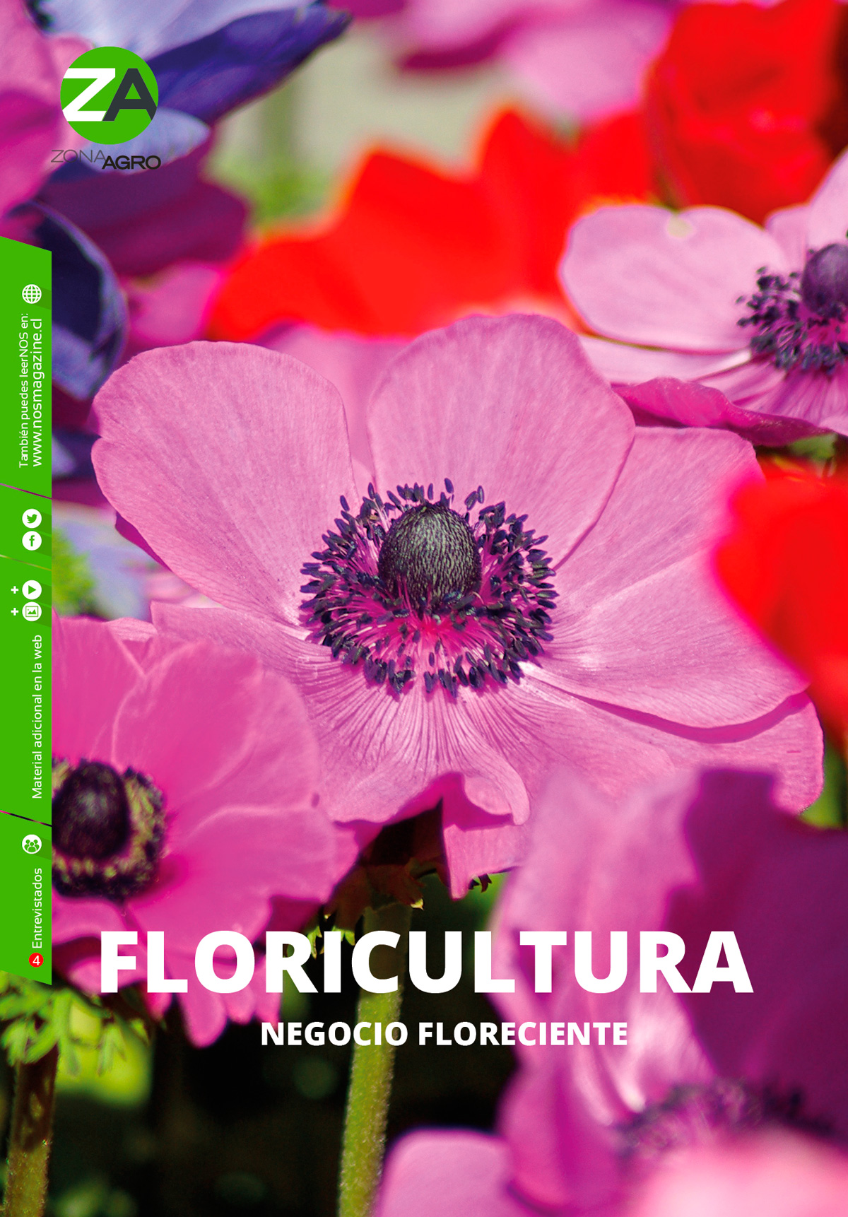 Photo of Floricultura. Negocio floreciente