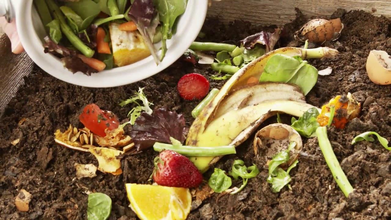 Photo of Reciclaje orgánico. Abono natural para nuestros cultivos