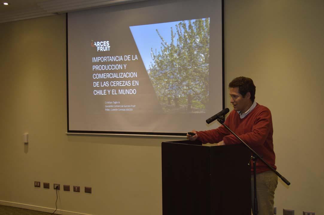 Cristian Tagle, Presidente Comité de Cerezas ASOEX