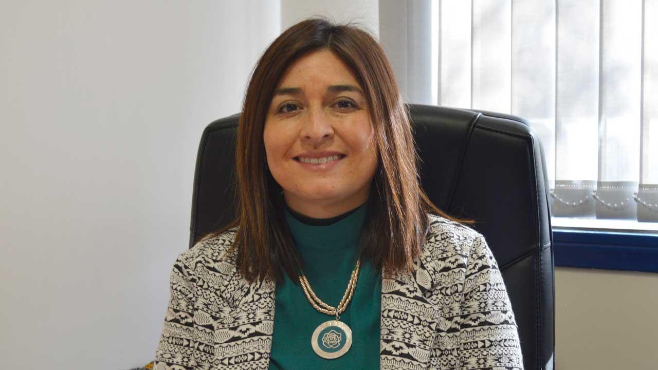 Dra. Carolina Luengo M. Magíster en Salud Pública Departamento de Enfermería Facultad de Ciencias de la Salud y los Alimentos