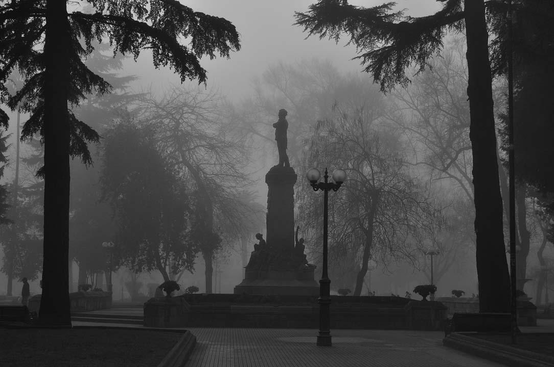 día de neblina - primer premio Ñuble lo hacemos todos