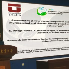 CITRA UTALCA trabajará con Universidad Agrícola de China
