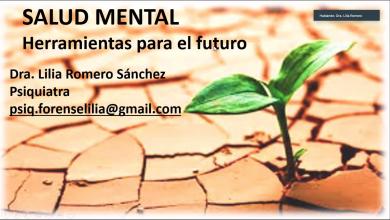"""Photo of WORKING PLACE ORGANIZA SEMINARIO GRATUITO """"SALUD MENTAL – HERRAMIENTAS PARA EL FUTURO"""""""